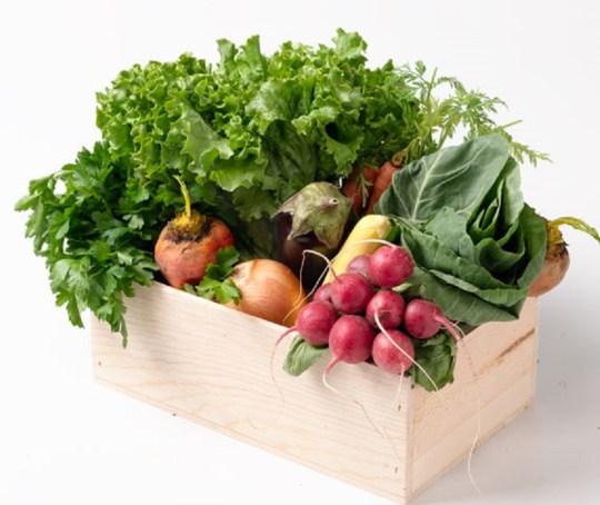 springproducecover