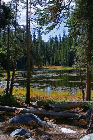 Tioga pond