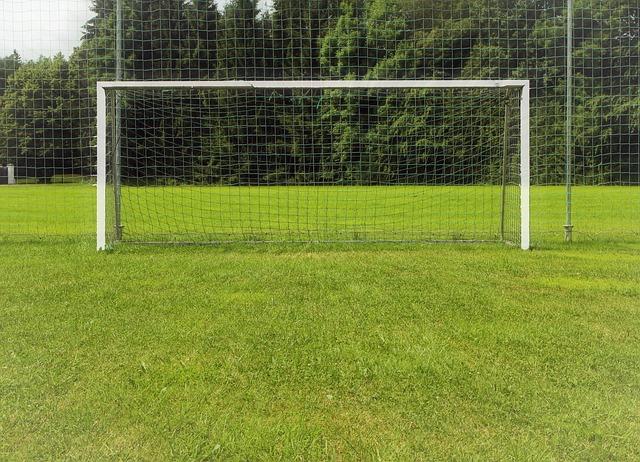 goal-374490_640