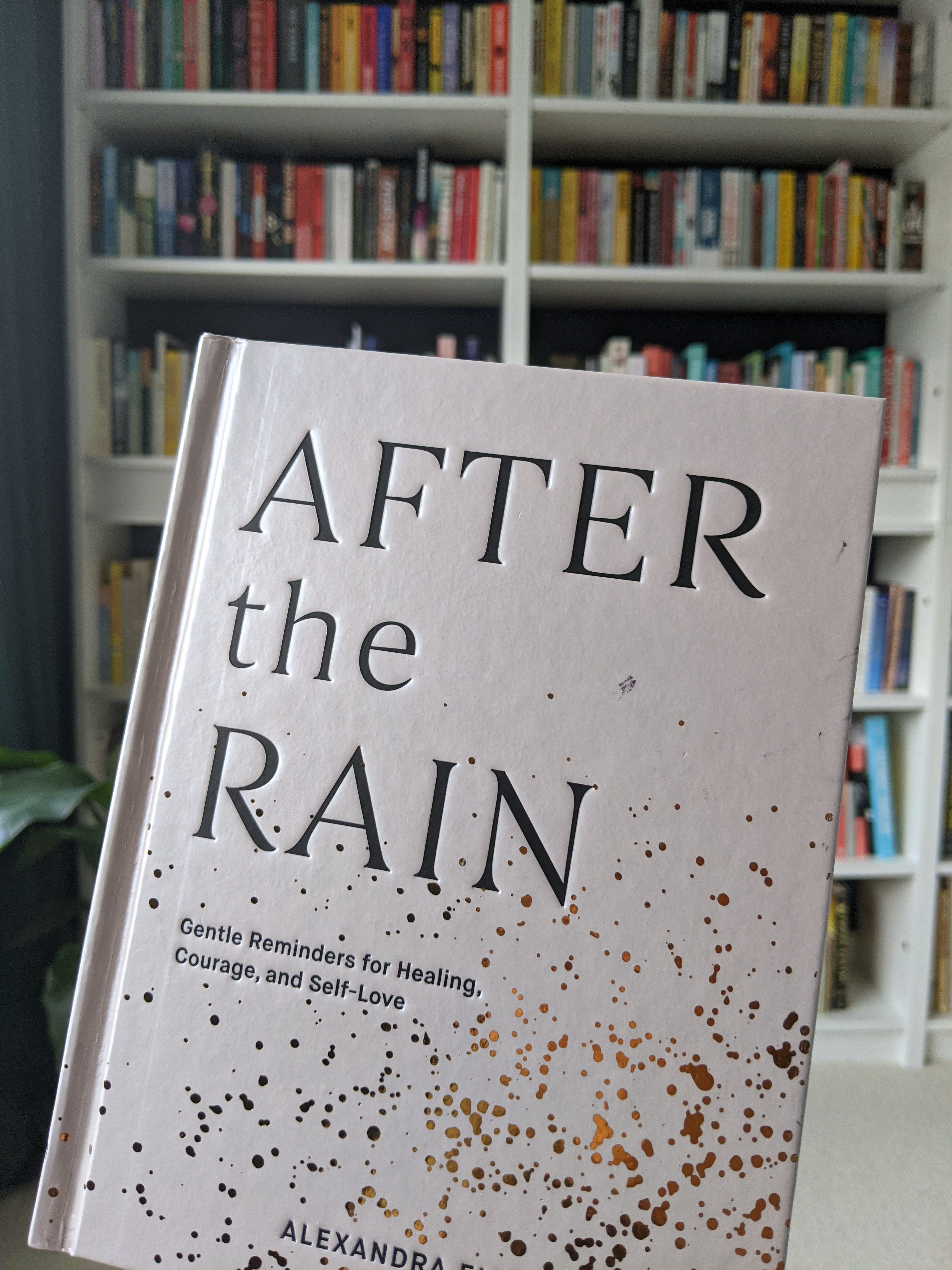 Cover of Alex Elle, After the Rain