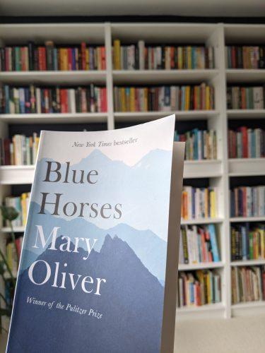 Cover of Blue Horses against a bookshelf
