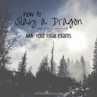 This five point guide will help you create a master plan to slay your finals... and maybe a dragon or two along the way :)