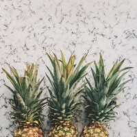 pineapple-supply-co-144743