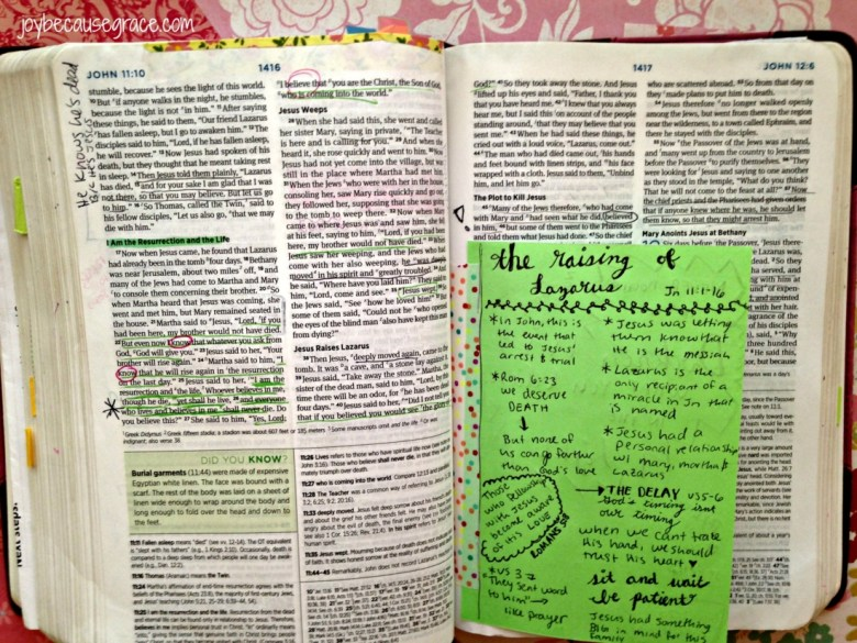 Bible Journal 11