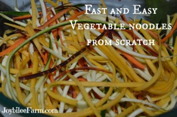 Vegetable Noodles From Scratch