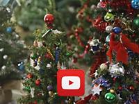 JoyCatchers video