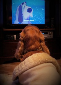 kuzco watching 101 dalmatiens