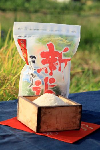 murasukenokome2