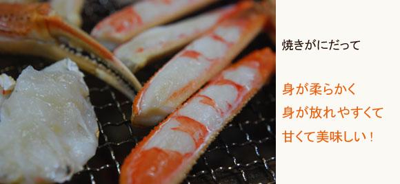 mizuganinoyakigani580