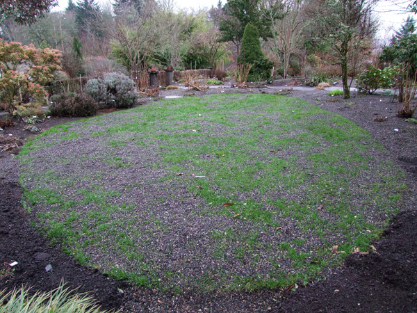 Using Gravel to Improve Your Lawn  Joy Creek Nursery