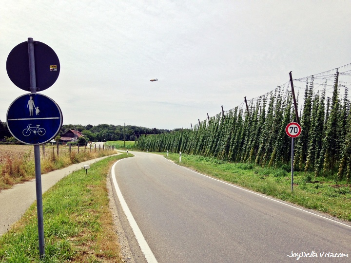 Lake Constance Bike Tour #1 – 17 km Friedrichshafen-Tettnang-Eriskirch