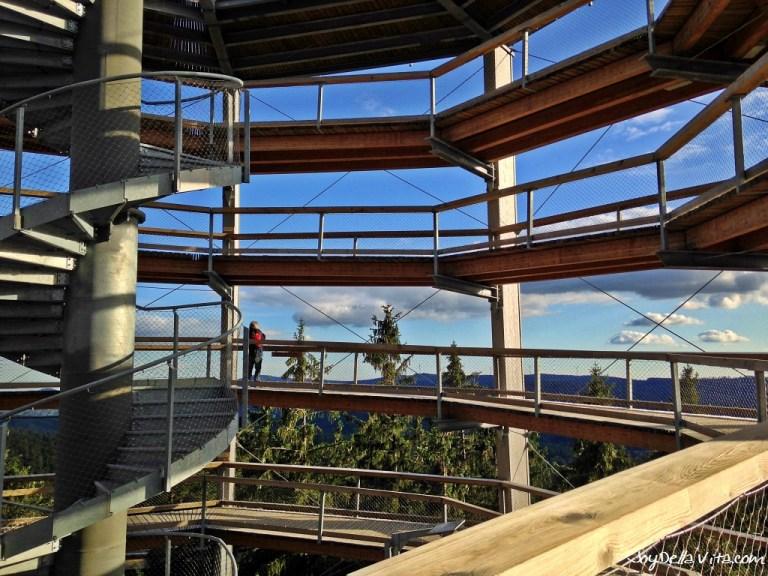 Stunning views from Lipno Treetop Walkway