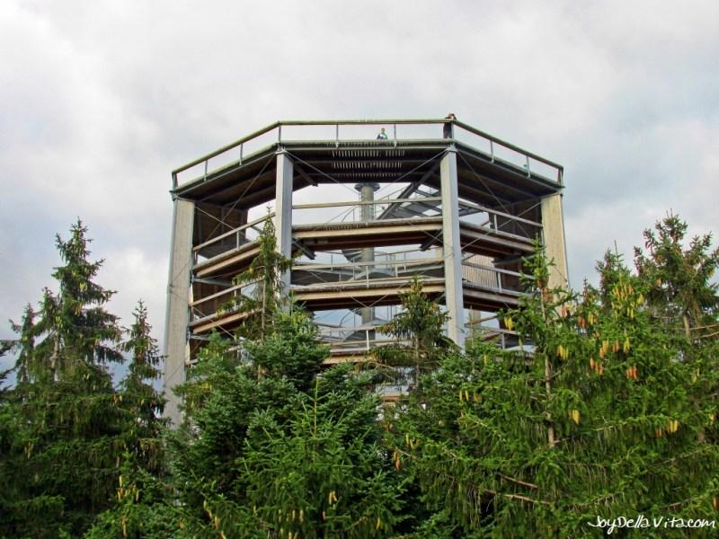 The Top of the Lipno Treetop Walkway