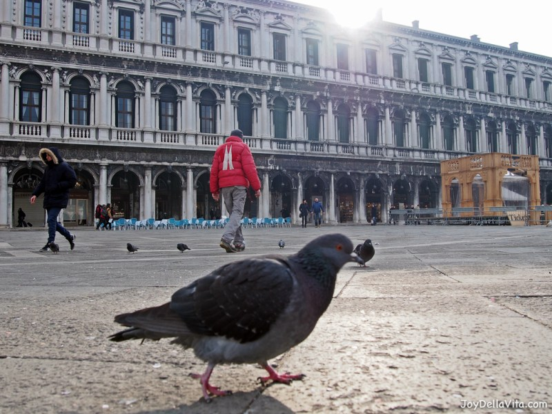 Saint Mark's Square in Venice in January Joy Della Vita Travelblog