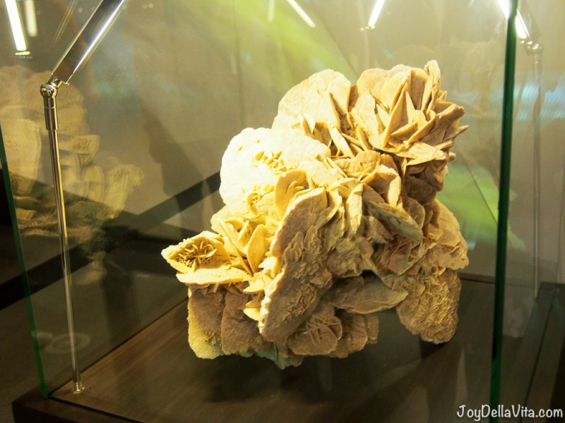 Desert Rose inside the Doha Tent EXPO 2016 Antalya Travelblog JoyDellaVita