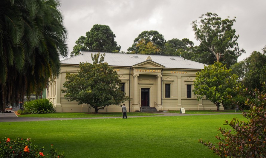 A visit to Adelaide Botanic Garden in late summer