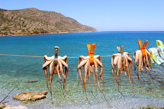 typical Octopus drying rack in the sun near the water - JoyDellaVita.com