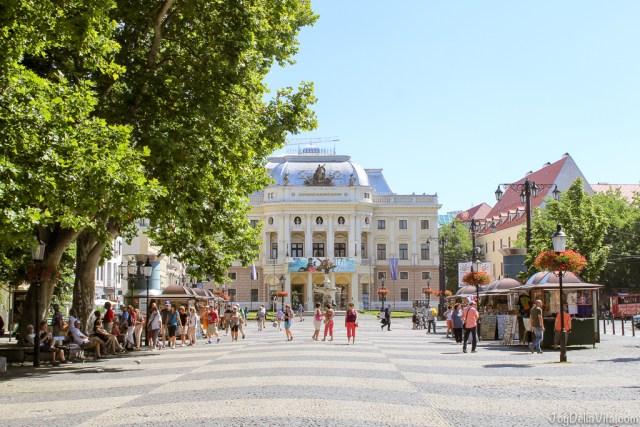 Castle Old Town Tour by Bratislava Free Tour -  JoyDellaVita.com
