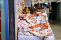 Tips for haggling at a market in Italy - Fish market in Genoa - Travelblog JoyDellaVita.com