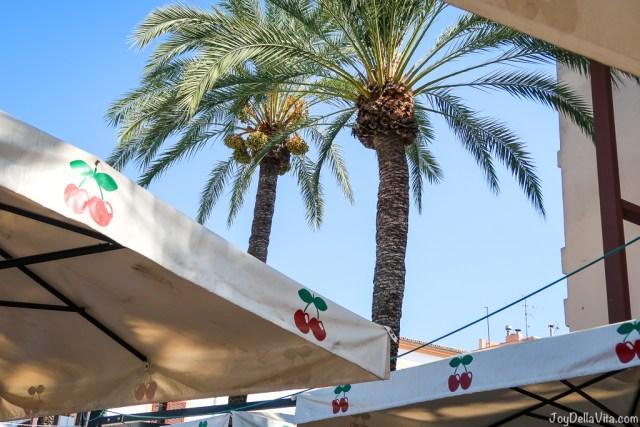 Pacha cherry and palm tree Ibiza Eivissa Sightseeing September