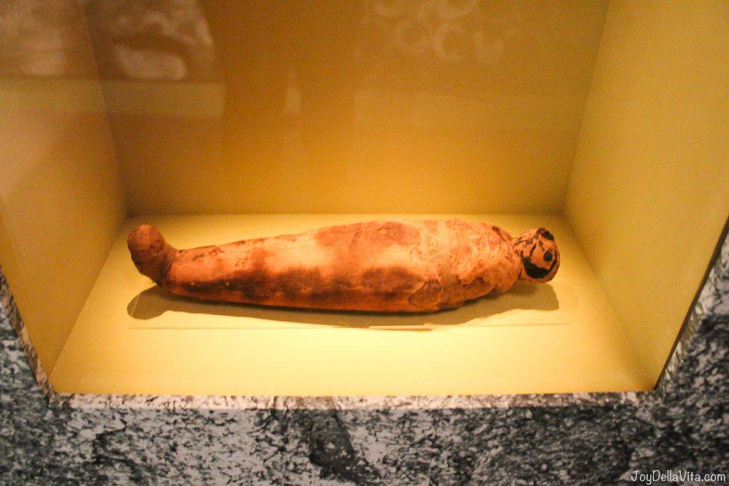 Mummy of a Bird World Museum Liverpool