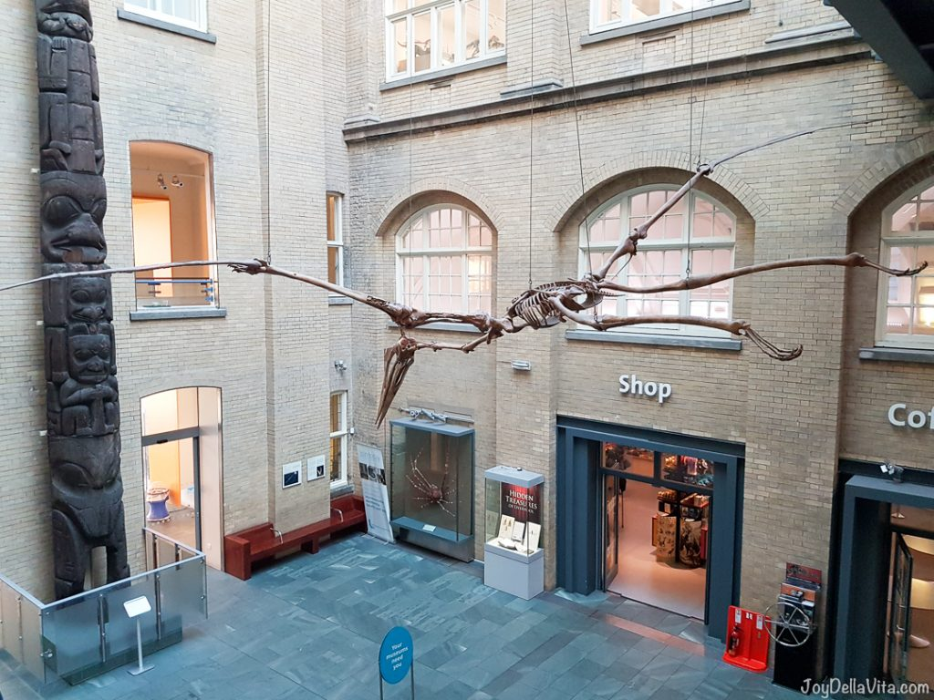 visit to World Museum Liverpool
