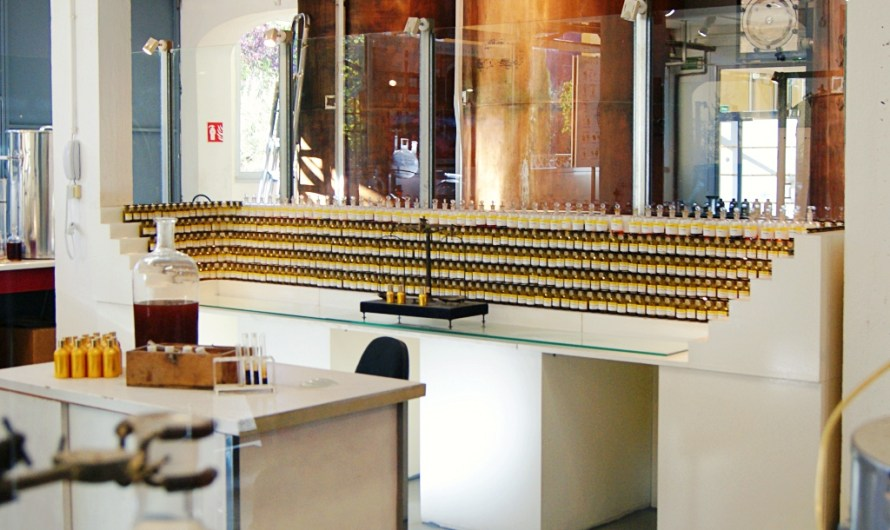 Guided Tour at Fragonard Perfumery – The Èze factory near Monaco / Nice