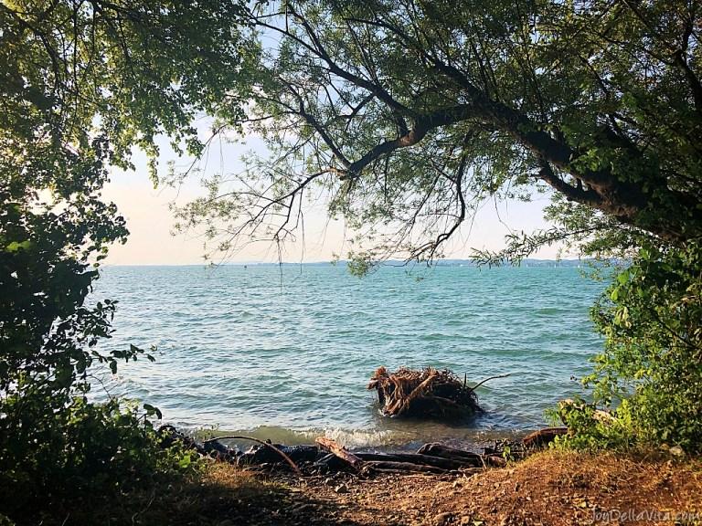 Sightseeing Walk in Bregenz, Vorarlberg, to the shores of Lake Constance