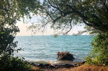 Sightseeing Walk Bregenz shores of Lake Constance