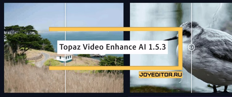 Topaz Video Enhance AI 1.5.3