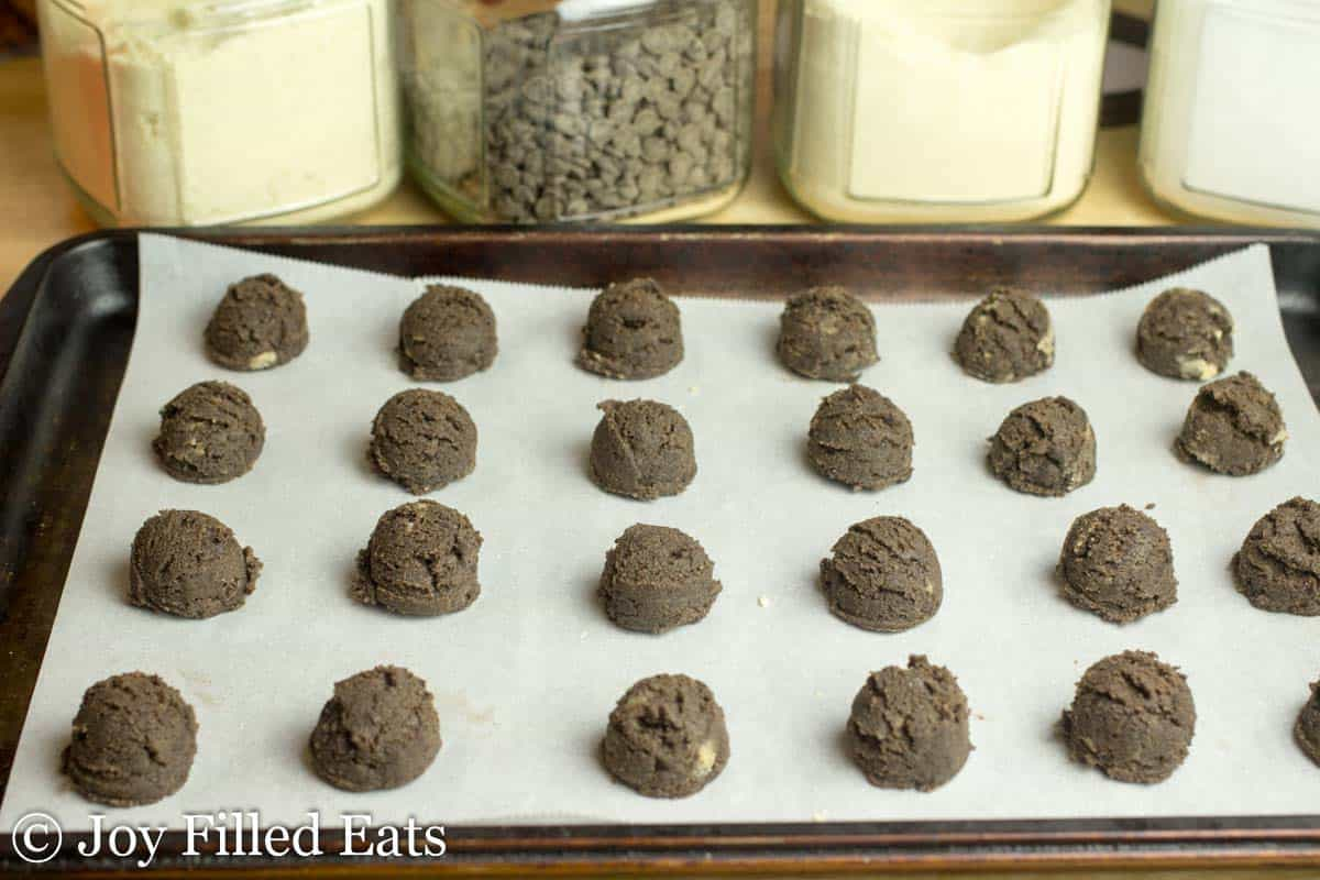Chocolate Chip Mocha Cookies - Low Carb, Sugar/Grain/Gluten Free, THM S