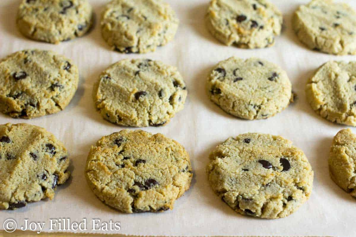 Chocolate Chip Shortbread Cookies - Low Carb, Grain & Sugar Free, THM S