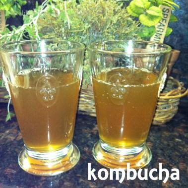 home brewed kombucha