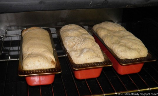 mp2090145 bread in oven