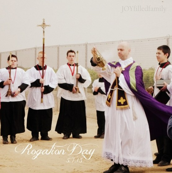 Fr. B  Rogation Day 5.7.13