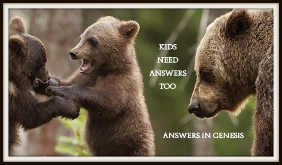 Kids Need Answers too! Find some great answers at Answers in Genesis