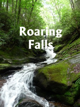 Roaring Falls, NC