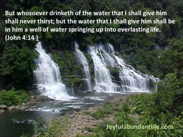 15 John 4 14