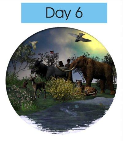 Creation day 6