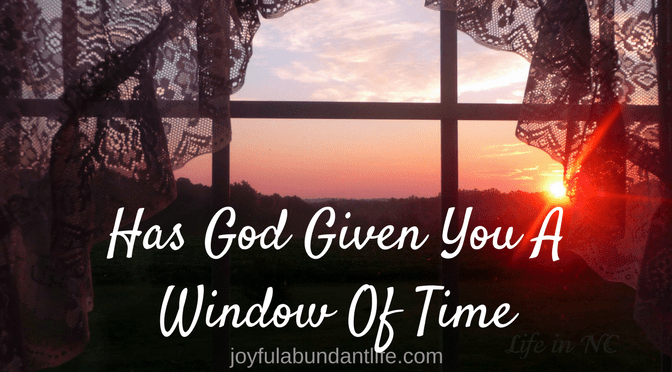 A Window of Time and a True Story