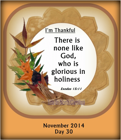 Exodus 15:11  Who is like unto thee, O LORD, among the gods? who is like thee, glorious in holiness, fearful in praises, doing wonders?