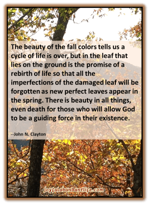 The beauty of the fall colors tells us a cycle of life is over, but in the leaf that lies on the ground is the promise of a rebirth of life so that all the imperfections of the damaged leaf will be forgotten as new perfect leaves appear in the spring. There is beauty in all things, even death for those who will allow God to be a guiding force in their existence. --John N. Clayton