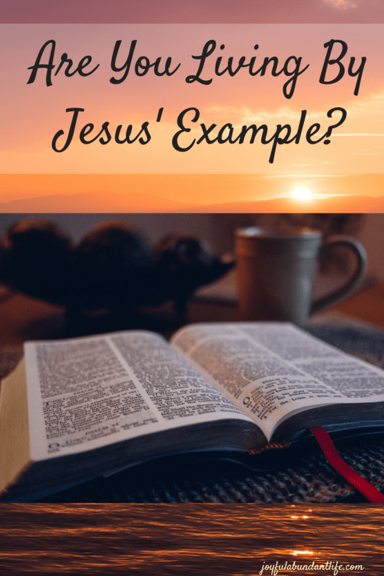 Are You Living By Jesus' Example in the Word of God?