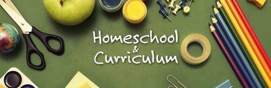 homeschool-and-curriculum-category