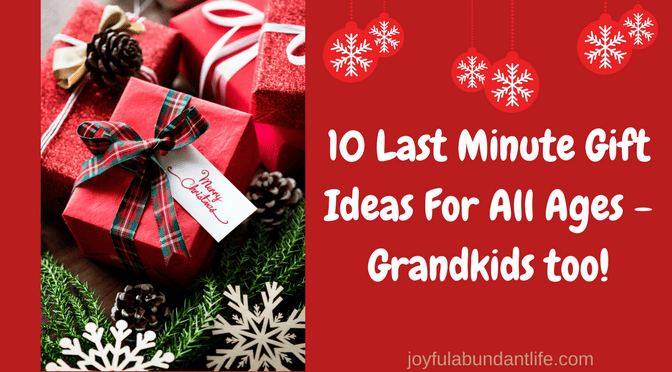 Last Minute Gift Ideas for All Ages – Grandkids too!