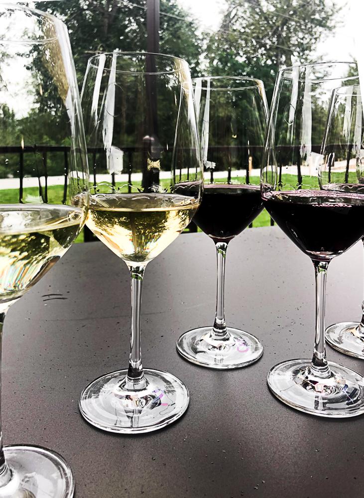 Wine flight from Telaya Wine Co.