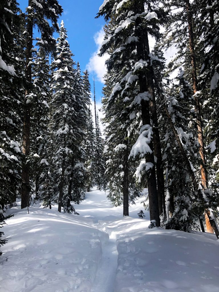 Staying active outdoors and snowshoeing on Grand Mesa