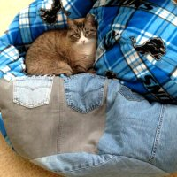 How to Make a Bean Bag with Recycled Jeans and Fleece