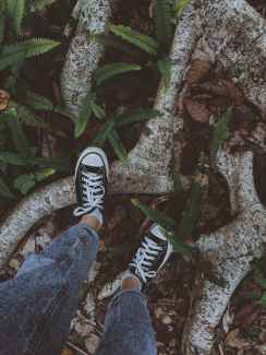 Person stepping on tree roots in a forest. They are feeling the earth beneath them as the learn how to ground. If you would like support in learning how to ground, reach out. I am a somatic ecotherapist in Berkeley.