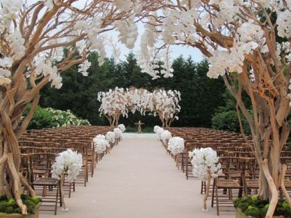 cherry blossom reception white